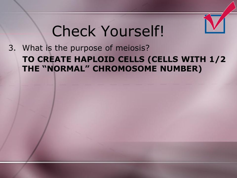 """Check Yourself! 3.What is the purpose of meiosis? TO CREATE HAPLOID CELLS (CELLS WITH 1/2 THE """"NORMAL"""" CHROMOSOME NUMBER)"""