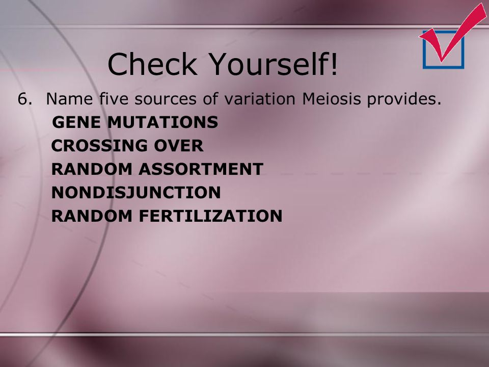 Check Yourself! 6.Name five sources of variation Meiosis provides. GENE MUTATIONS CROSSING OVER RANDOM ASSORTMENT NONDISJUNCTION RANDOM FERTILIZATION