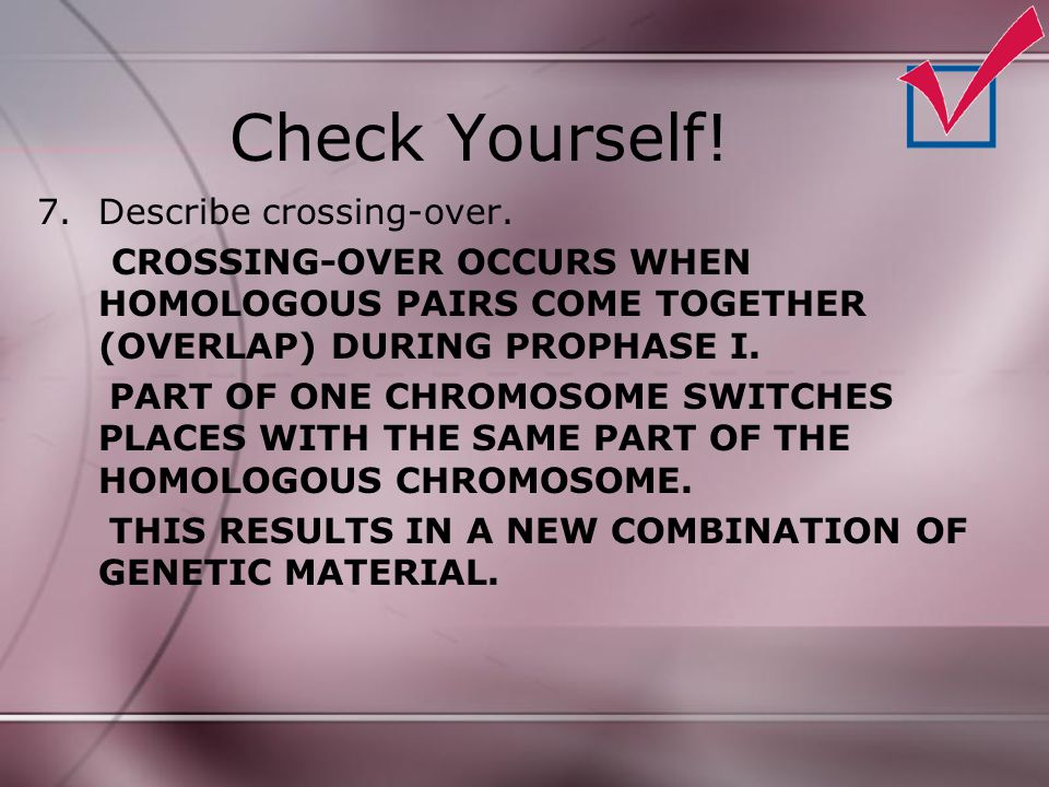 Check Yourself! 7.Describe crossing-over. CROSSING-OVER OCCURS WHEN HOMOLOGOUS PAIRS COME TOGETHER (OVERLAP) DURING PROPHASE I. PART OF ONE CHROMOSOME