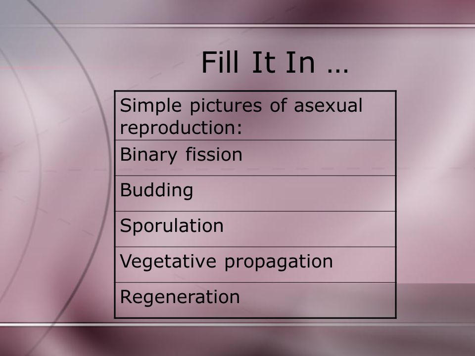 Check Yourself.3. Why is mitosis necessary for asexual reproduction.