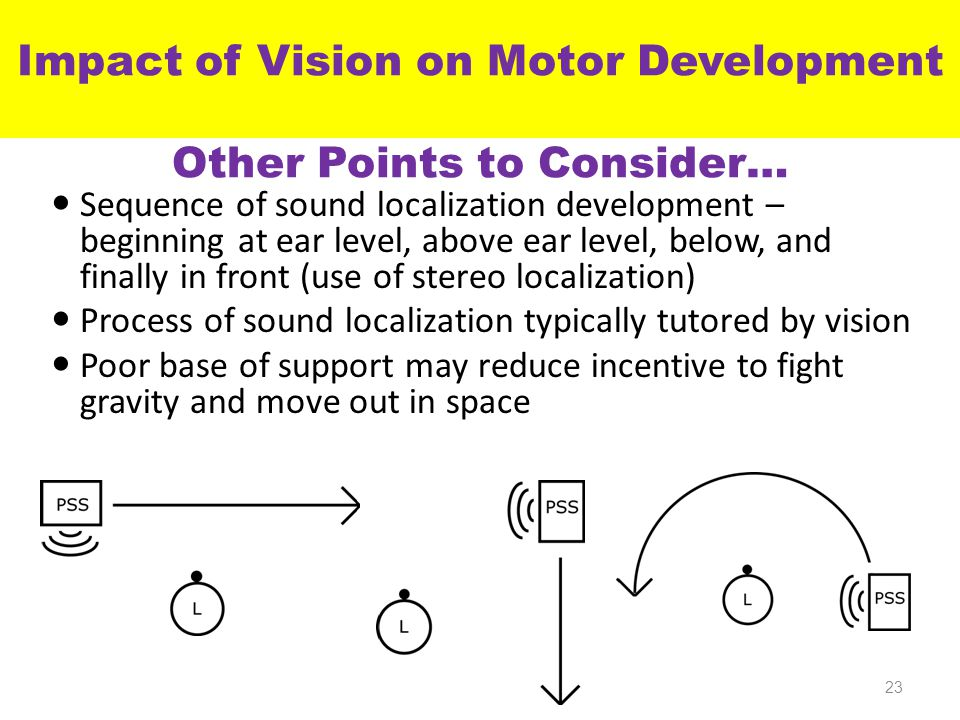 Impact of Vision on Motor Development Other Points to Consider… Sequence of sound localization development – beginning at ear level, above ear level, below, and finally in front (use of stereo localization) Process of sound localization typically tutored by vision Poor base of support may reduce incentive to fight gravity and move out in space 23