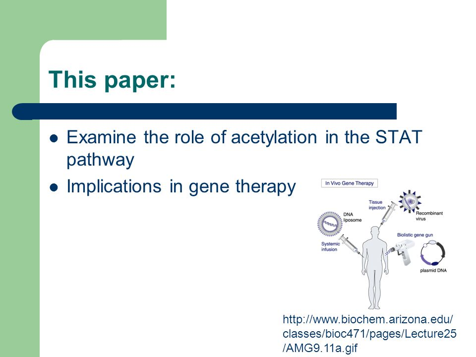 This paper: Examine the role of acetylation in the STAT pathway Implications in gene therapy http://www.biochem.arizona.edu/ classes/bioc471/pages/Lecture25 /AMG9.11a.gif