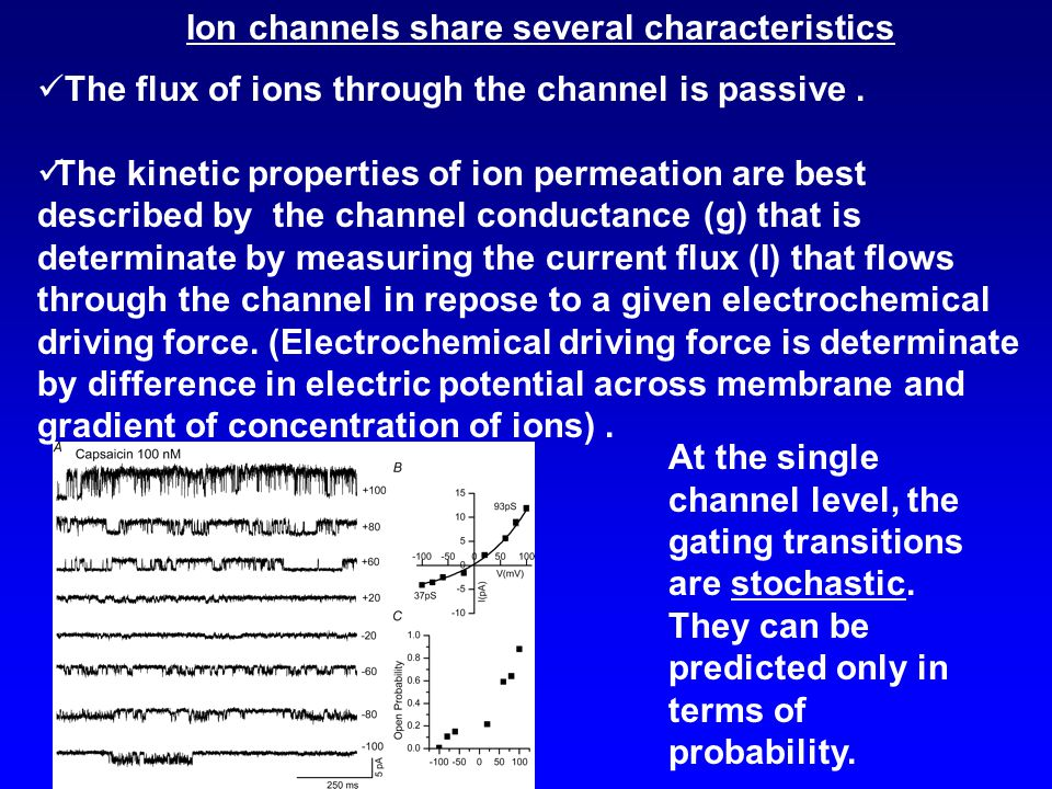 Ion channels share several characteristics The flux of ions through the channel is passive. The kinetic properties of ion permeation are best describe