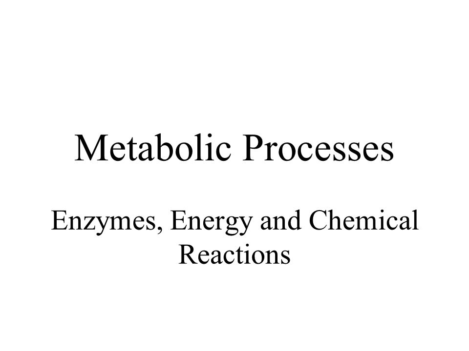 Metabolic Processes Enzymes, Energy and Chemical Reactions