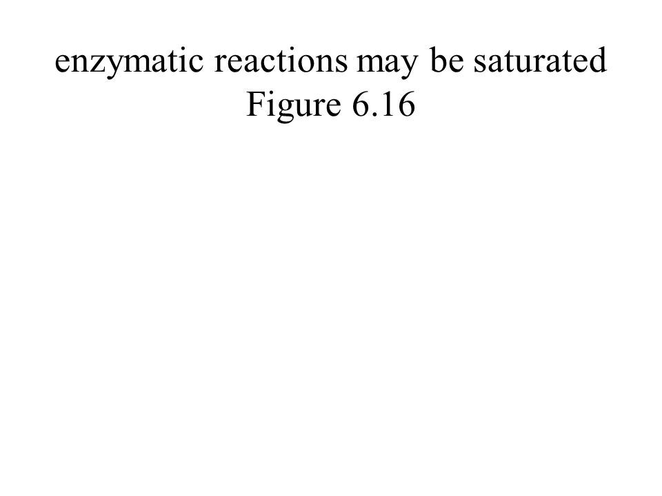 enzymatic reactions may be saturated Figure 6.16