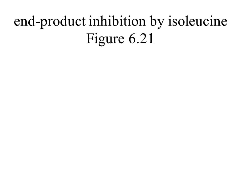 end-product inhibition by isoleucine Figure 6.21