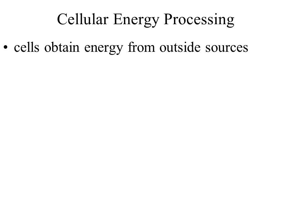 Cellular Energy Processing cells obtain energy from outside sources