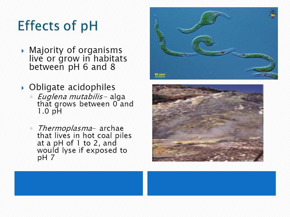  Majority of organisms live or grow in habitats between pH 6 and 8  Obligate acidophiles ◦ Euglena mutabilis- alga that grows between 0 and 1.0 pH ◦