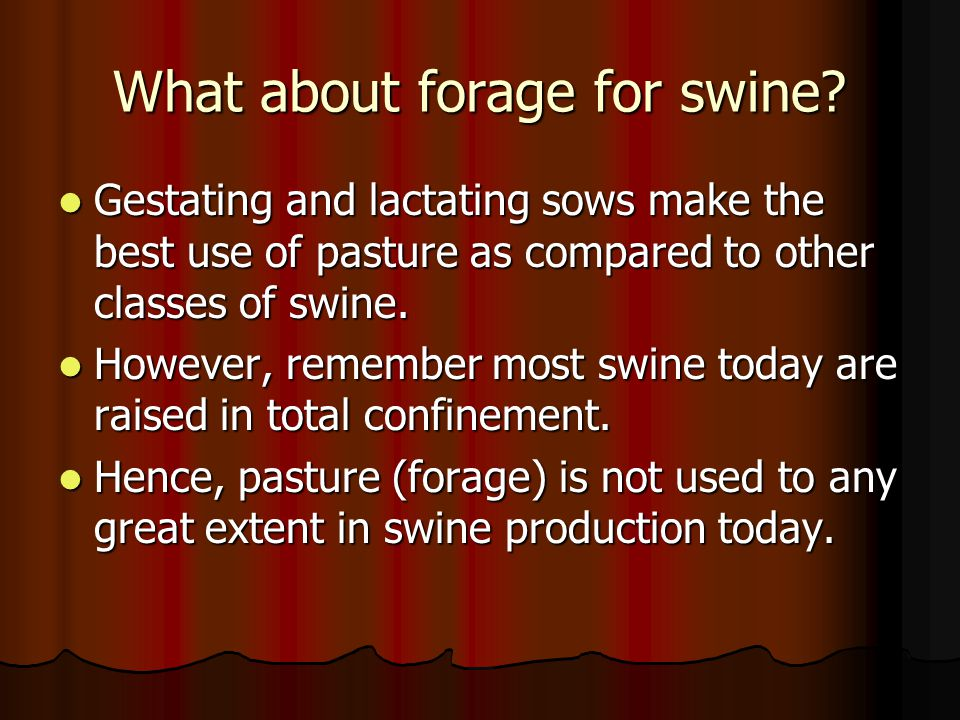 What about forage for swine.