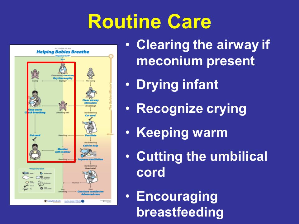 Routine Care Clearing the airway if meconium present Drying infant Recognize crying Keeping warm Cutting the umbilical cord Encouraging breastfeeding