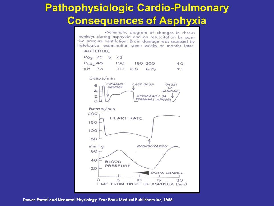 Dawes Foetal and Neonatal Physiology. Year Book Medical Publishers Inc; 1968. Pathophysiologic Cardio-Pulmonary Consequences of Asphyxia