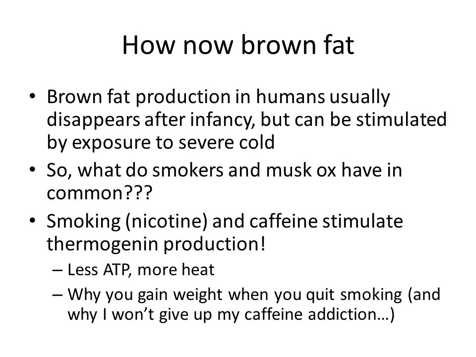 How now brown fat Brown fat production in humans usually disappears after infancy, but can be stimulated by exposure to severe cold So, what do smoker
