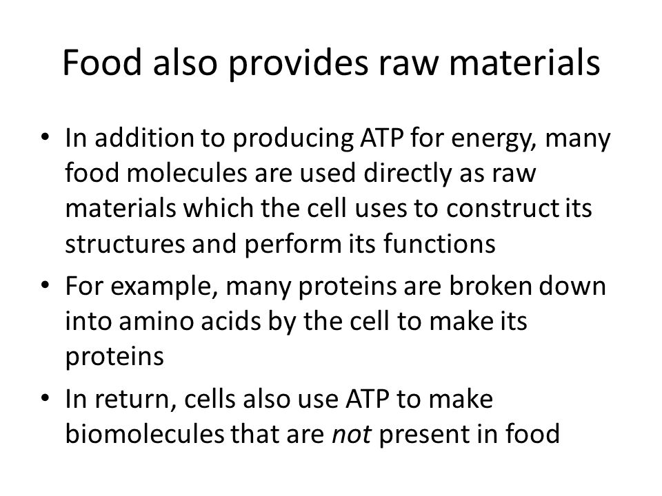 Food also provides raw materials In addition to producing ATP for energy, many food molecules are used directly as raw materials which the cell uses t