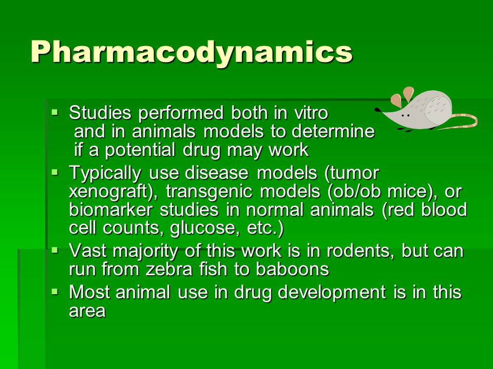Pharmacodynamics  Studies performed both in vitro and in animals models to determine if a potential drug may work  Typically use disease models (tumor xenograft), transgenic models (ob/ob mice), or biomarker studies in normal animals (red blood cell counts, glucose, etc.)  Vast majority of this work is in rodents, but can run from zebra fish to baboons  Most animal use in drug development is in this area