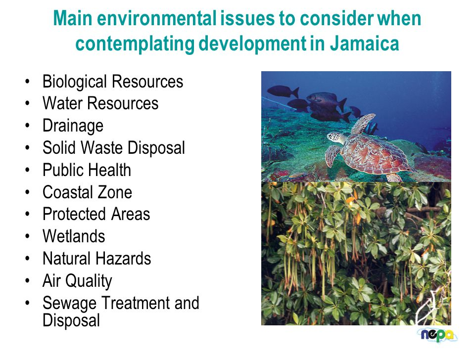Biological Resources Water Resources Drainage Solid Waste Disposal Public Health Coastal Zone Protected Areas Wetlands Natural Hazards Air Quality Sewage Treatment and Disposal Main environmental issues to consider when contemplating development in Jamaica