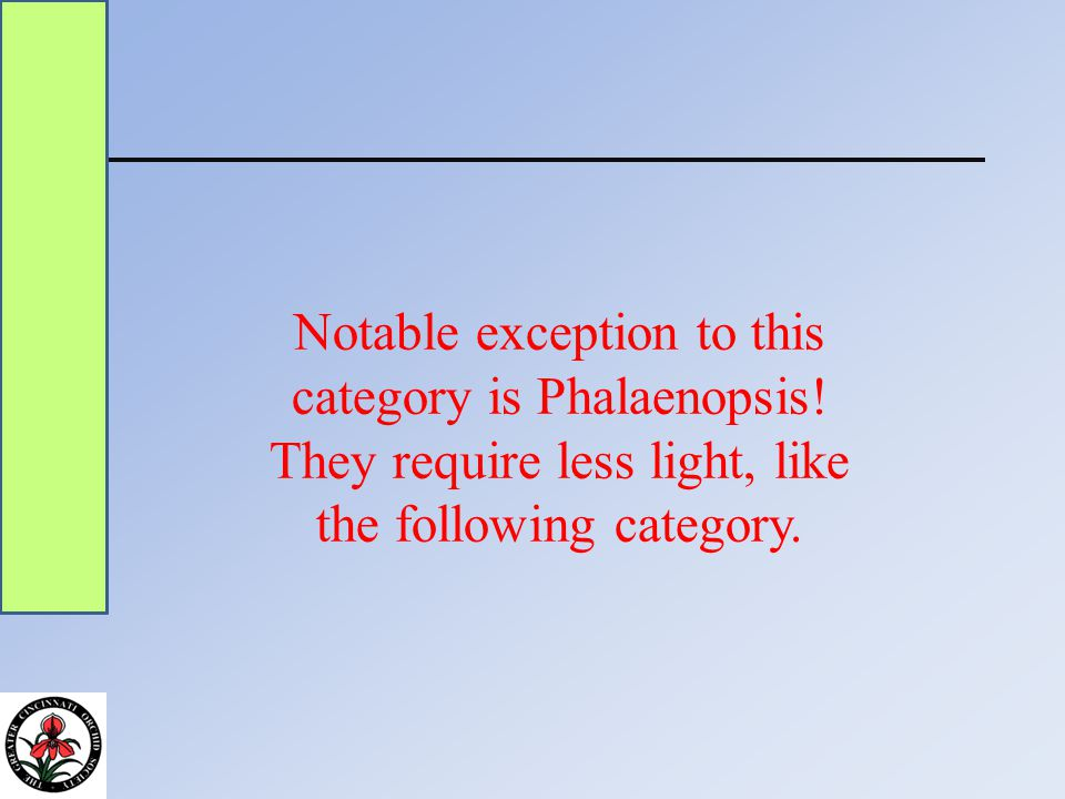 Notable exception to this category is Phalaenopsis.