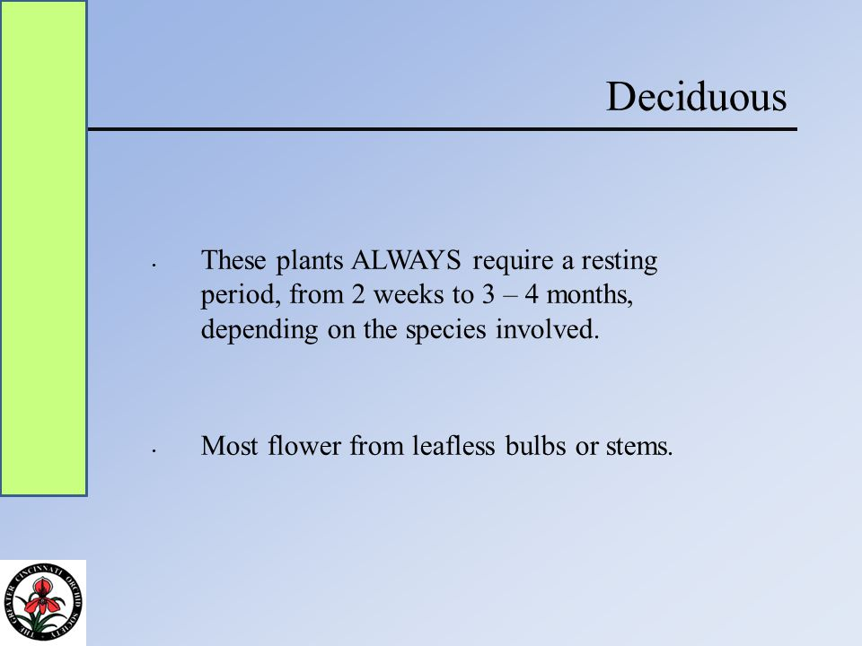 Deciduous These plants ALWAYS require a resting period, from 2 weeks to 3 – 4 months, depending on the species involved.