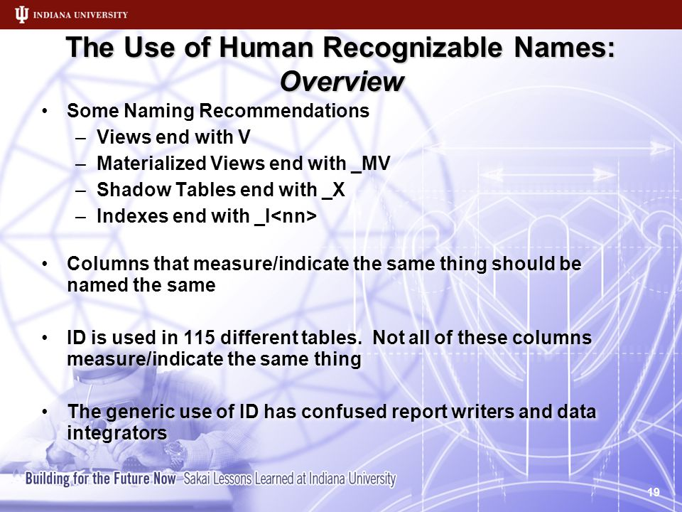 The Use of Human Recognizable Names: Overview Some Naming Recommendations –Views end with V –Materialized Views end with _MV –Shadow Tables end with _X –Indexes end with _I Columns that measure/indicate the same thing should be named the same ID is used in 115 different tables.