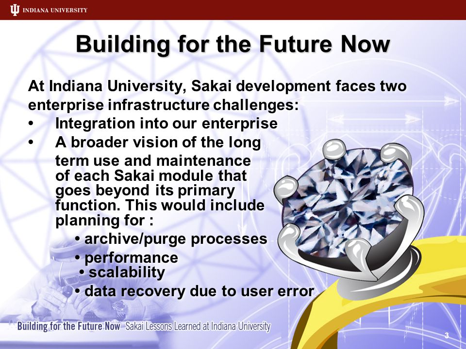 Building for the Future Now At Indiana University, Sakai development faces two enterprise infrastructure challenges: Integration into our enterprise A broader vision of the long term use and maintenance of each Sakai module that goes beyond its primary function.