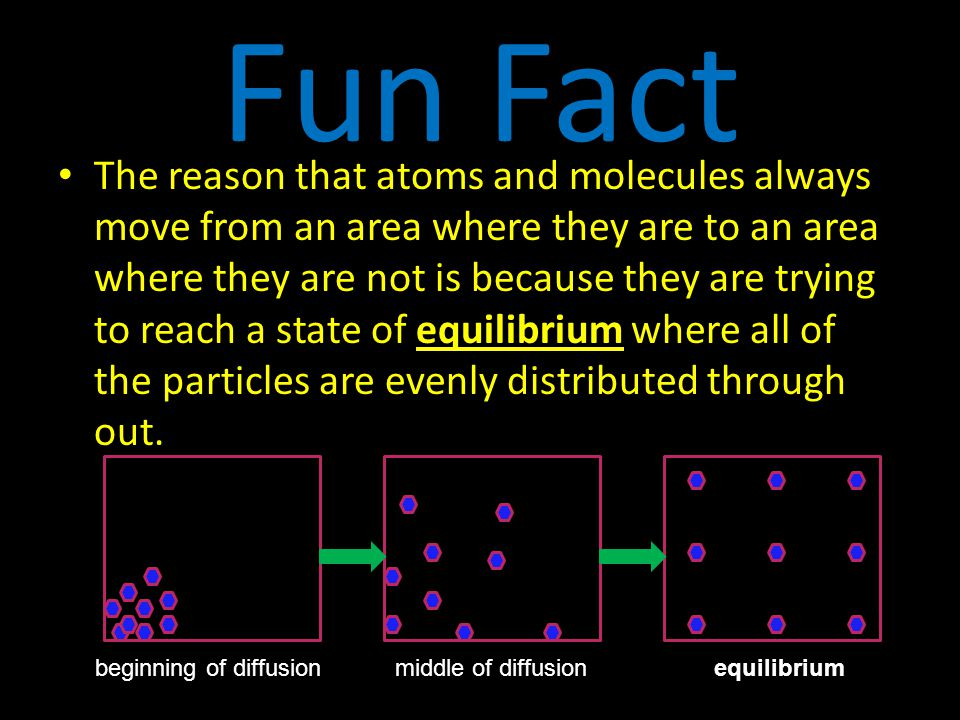 Fun Fact The reason that atoms and molecules always move from an area where they are to an area where they are not is because they are trying to reach