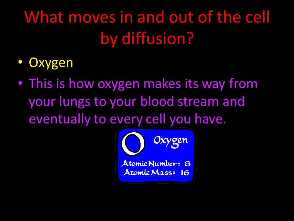 What moves in and out of the cell by diffusion? Oxygen This is how oxygen makes its way from your lungs to your blood stream and eventually to every c