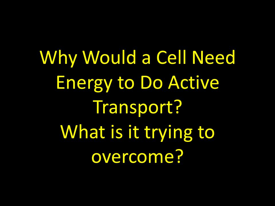 Why Would a Cell Need Energy to Do Active Transport? What is it trying to overcome?