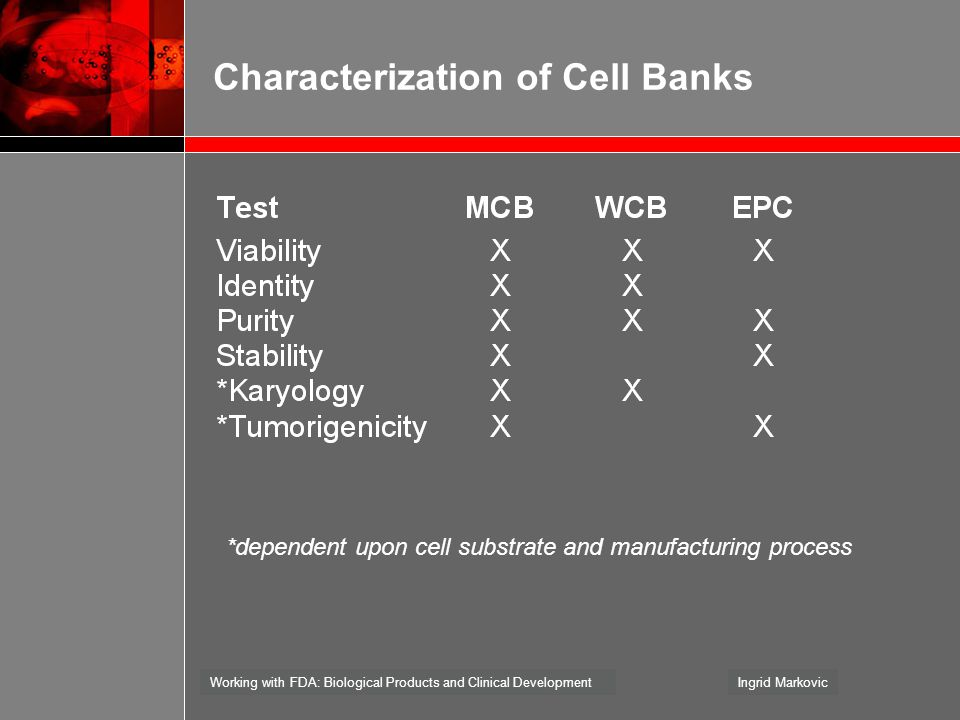 Working with FDA: Biological Products and Clinical DevelopmentIngrid Markovic Characterization of Cell Banks *dependent upon cell substrate and manufa
