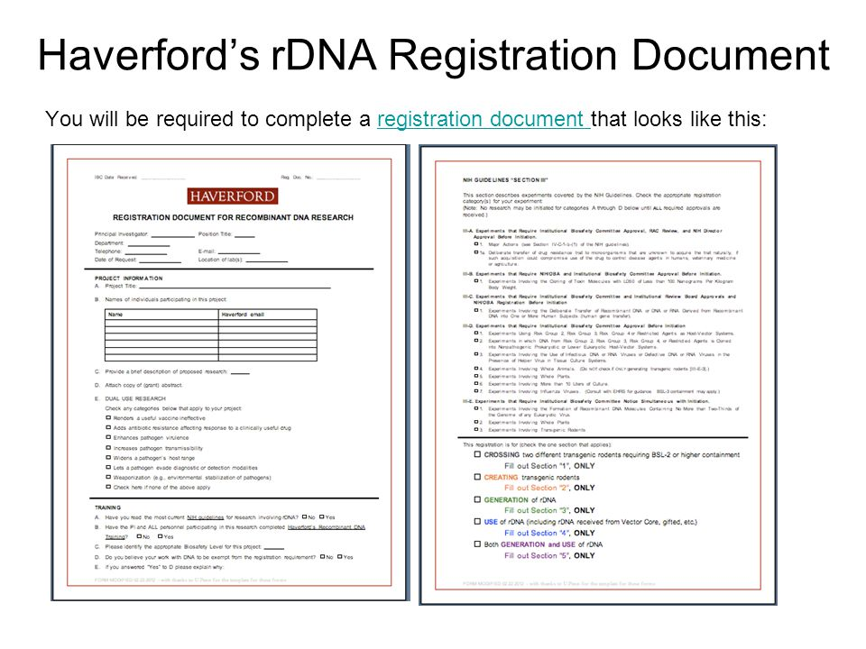 Haverford's rDNA Registration Document You will be required to complete a registration document that looks like this:registration document