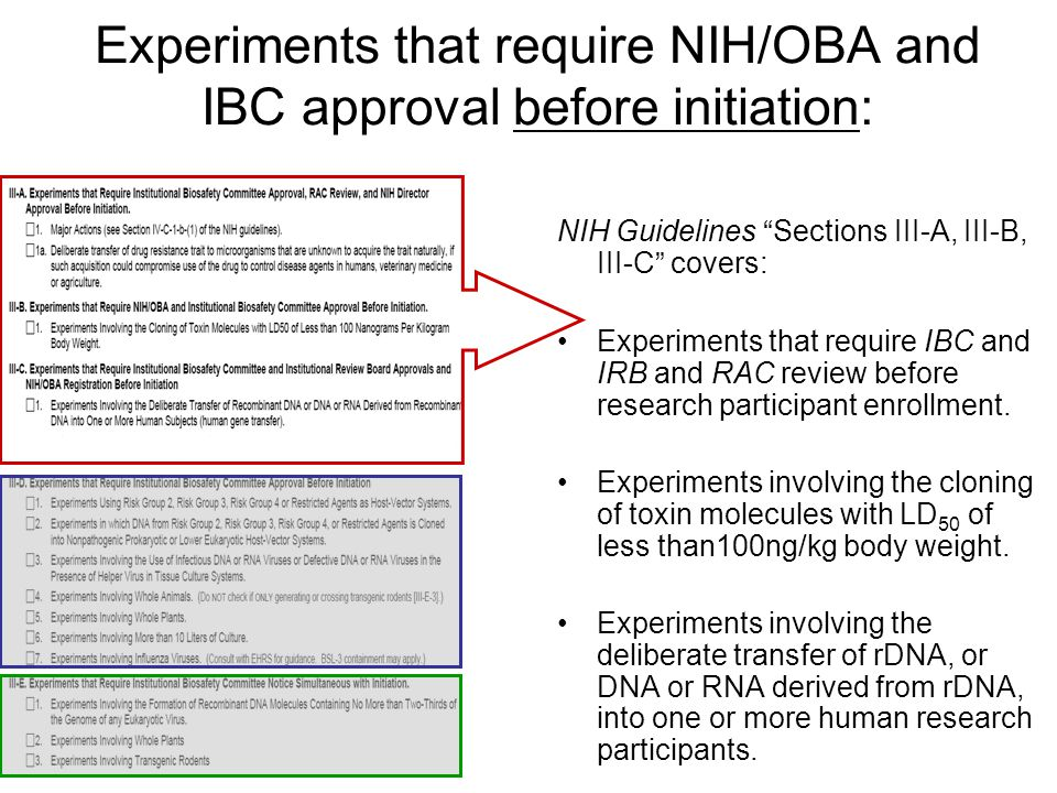 """Experiments that require NIH/OBA and IBC approval before initiation: NIH Guidelines """"Sections III-A, III-B, III-C"""" covers: Experiments that require IB"""