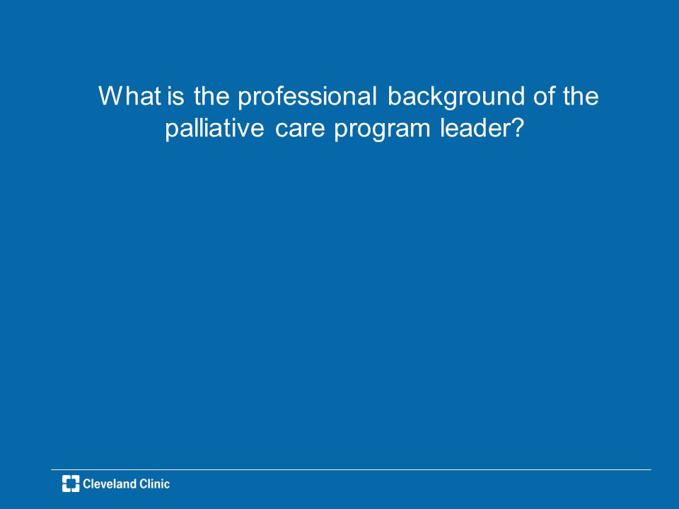 What is the professional background of the palliative care program leader