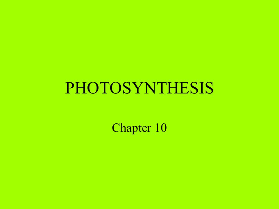 PHOTOSYNTHESIS Chapter 10
