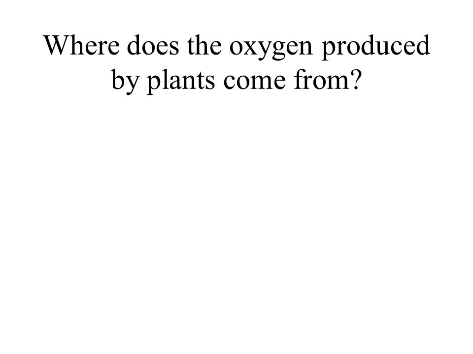 Where does the oxygen produced by plants come from?