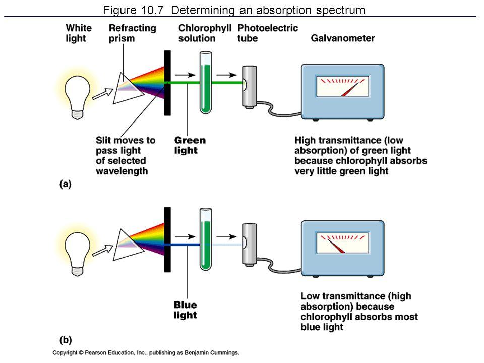 Figure 10.7 Determining an absorption spectrum