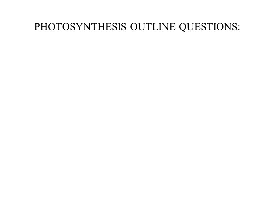 PHOTOSYNTHESIS OUTLINE QUESTIONS:
