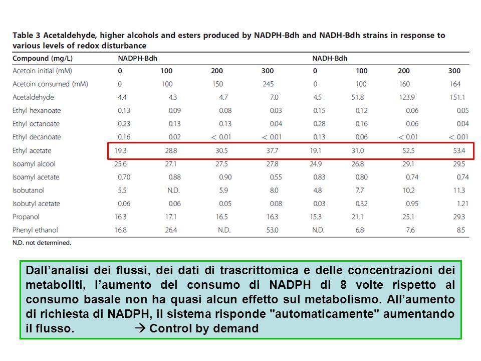 Dall'analisi dei flussi, dei dati di trascrittomica e delle concentrazioni dei metaboliti, l'aumento del consumo di NADPH di 8 volte rispetto al consu