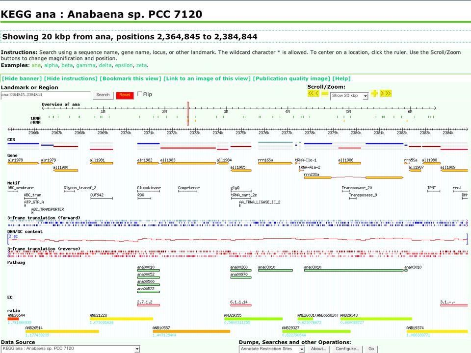 © 2004 Toshiaki Katayama, Human Genome Center, University of Tokyo KEGG ana