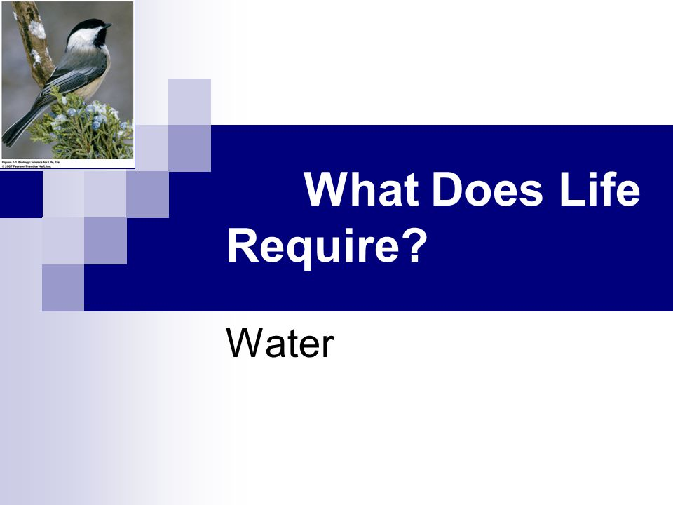2.1 What Does Life Require? Water