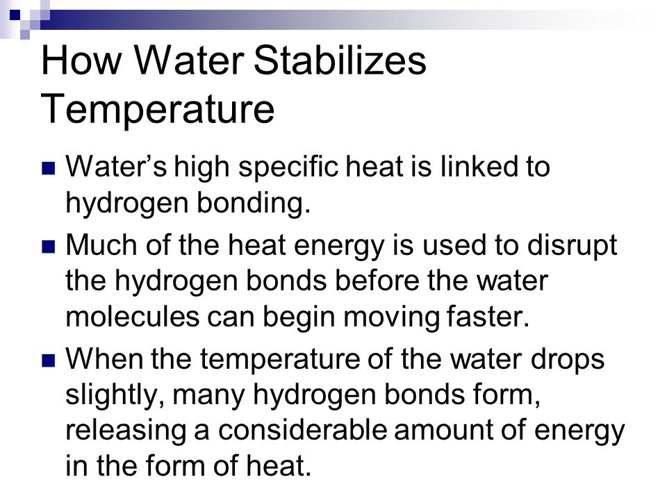 How Water Stabilizes Temperature Water's high specific heat is linked to hydrogen bonding.