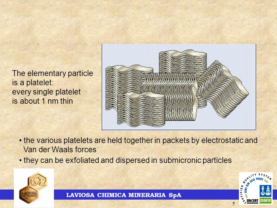 LAVIOSA CHIMICA MINERARIA SpA 5 The elementary particle is a platelet: every single platelet is about 1 nm thin the various platelets are held together in packets by electrostatic and Van der Waals forces they can be exfoliated and dispersed in submicronic particles