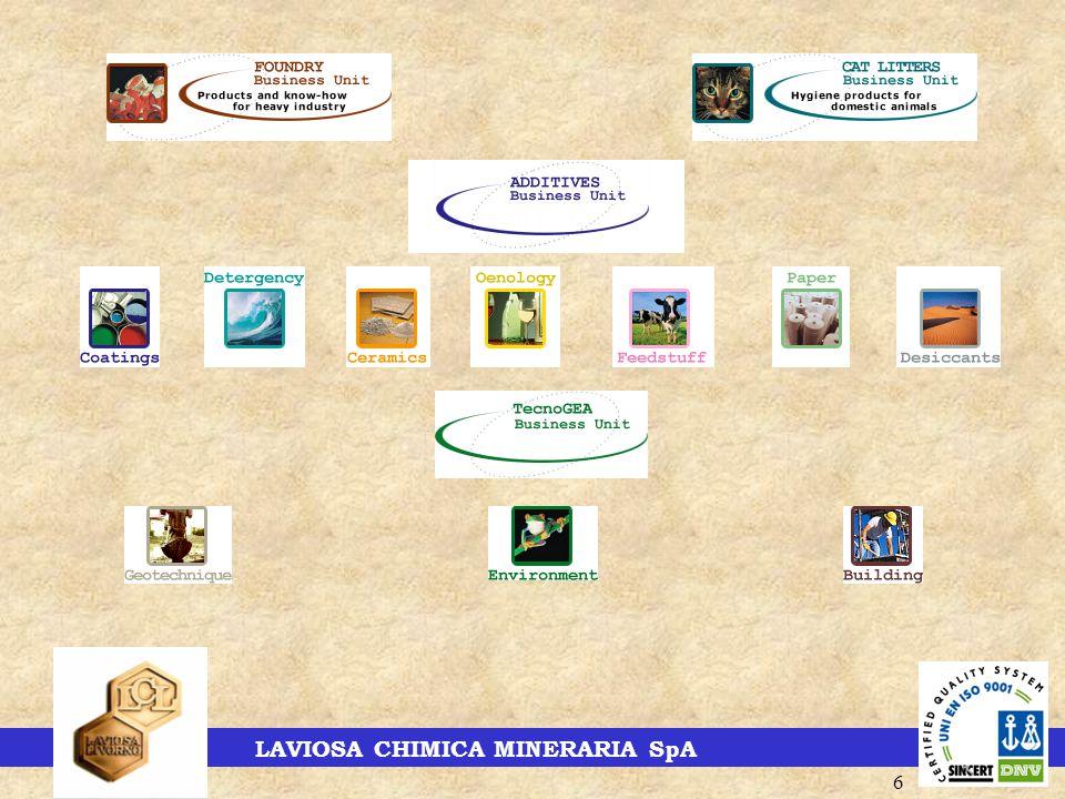 LAVIOSA CHIMICA MINERARIA SpA 6