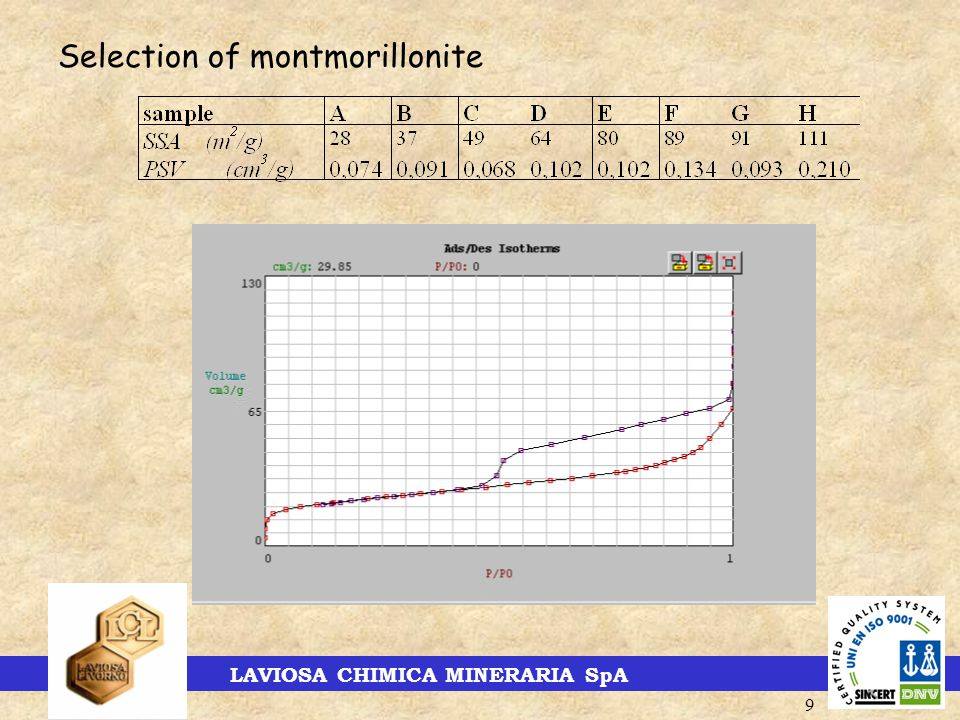 LAVIOSA CHIMICA MINERARIA SpA 9 Selection of montmorillonite