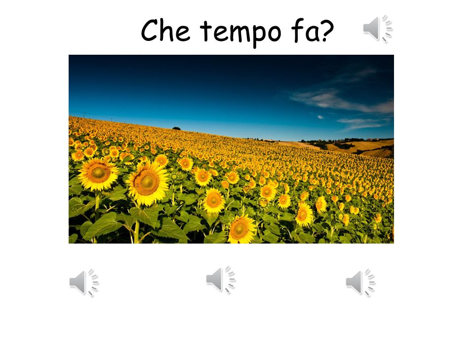 Che tempo fa ? Look at the following weather pictures. Listen to the three different weathers in Italian. Can you choose which one best describes the