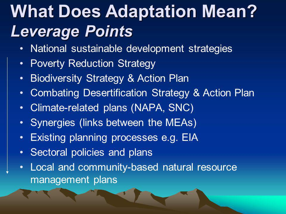 What Does Adaptation Mean? Leverage Points National sustainable development strategies Poverty Reduction Strategy Biodiversity Strategy & Action Plan