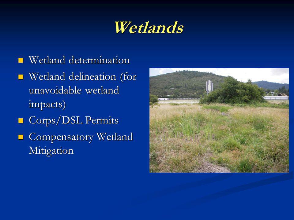 Wetlands Wetland determination Wetland determination Wetland delineation (for unavoidable wetland impacts) Wetland delineation (for unavoidable wetland impacts) Corps/DSL Permits Corps/DSL Permits Compensatory Wetland Mitigation Compensatory Wetland Mitigation