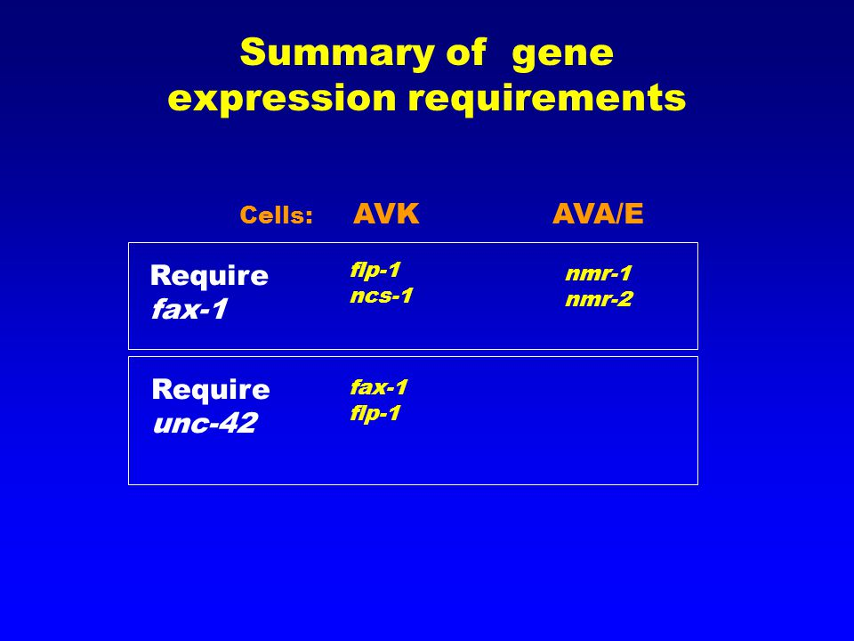 Summary of gene expression requirements AVKAVA/E Require fax-1 Require unc-42 flp-1 ncs-1 fax-1 flp-1 nmr-1 nmr-2 Cells: