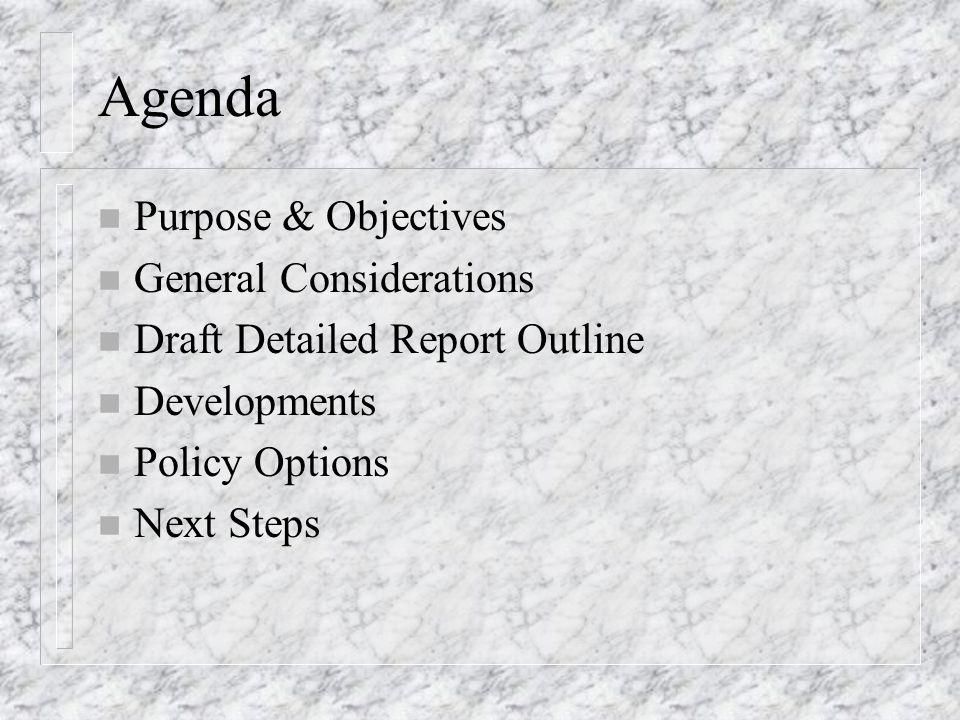 Agenda n Purpose & Objectives n General Considerations n Draft Detailed Report Outline n Developments n Policy Options n Next Steps