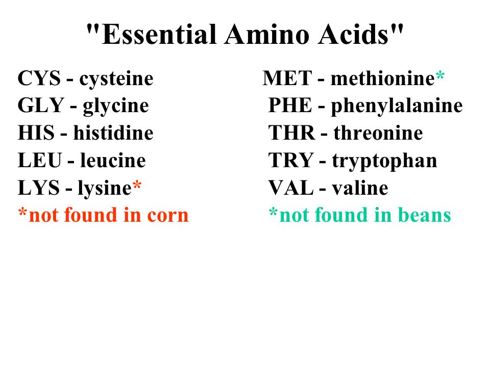 Essential Amino Acids CYS - cysteineMET - methionine* GLY - glycine PHE - phenylalanine HIS - histidine THR - threonine LEU - leucine TRY - tryptophan LYS - lysine* VAL - valine *not found in corn *not found in beans
