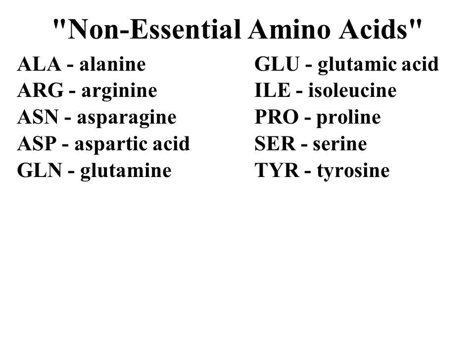 Non-Essential Amino Acids ALA - alanineGLU - glutamic acid ARG - arginineILE - isoleucine ASN - asparaginePRO - proline ASP - aspartic acidSER - serine GLN - glutamine TYR - tyrosine