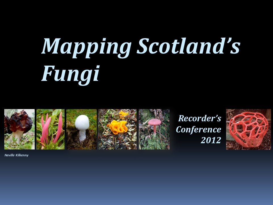 Mapping Scotland's Fungi Recorder's Conference 2012 Neville Kilkenny
