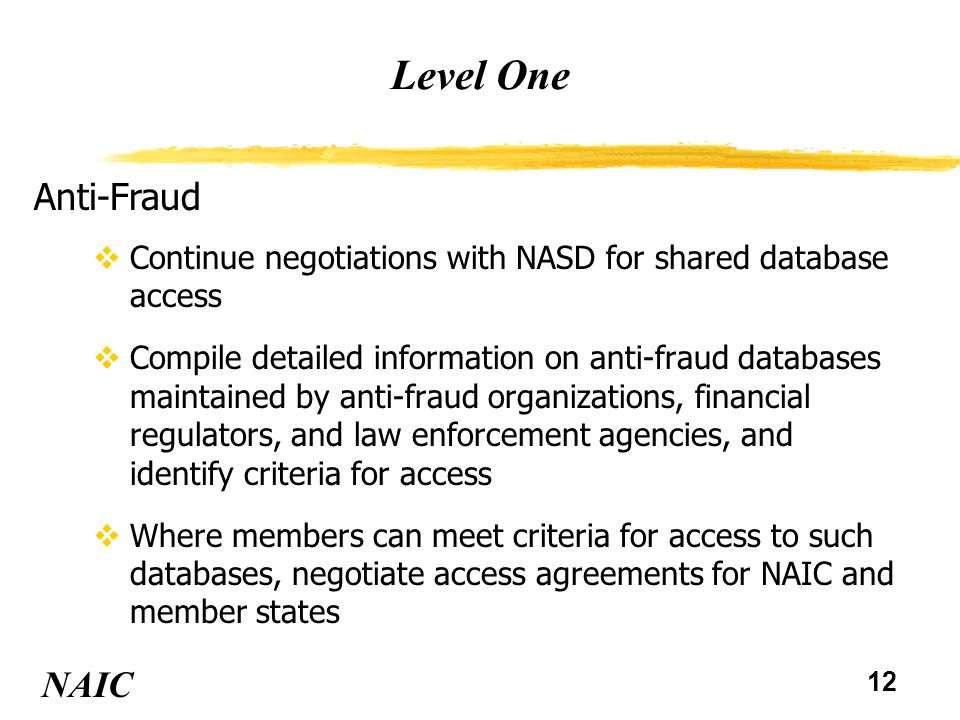 12 Level One NAIC Anti-Fraud vContinue negotiations with NASD for shared database access vCompile detailed information on anti-fraud databases maintained by anti-fraud organizations, financial regulators, and law enforcement agencies, and identify criteria for access vWhere members can meet criteria for access to such databases, negotiate access agreements for NAIC and member states